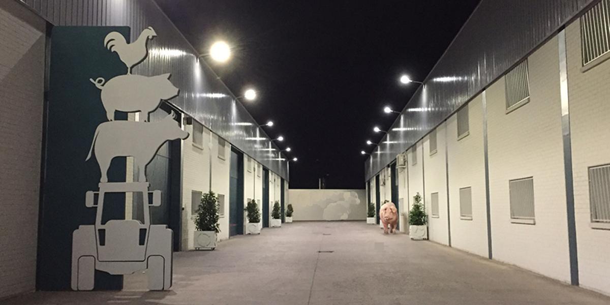 22 Instalaciones de Iluminacion Ranchos y Granjas